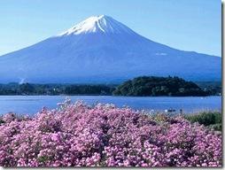 静岡県内の方はリフォームで10万円か20万円もらえます